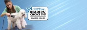 readers choice award, Pet Groomer, Dog Grooming